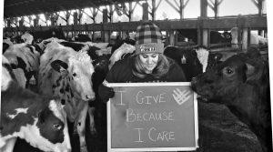 Mlékárna Cabot Creamery vyzvala v kampani #GivingTuesday své zákazníky, aby posílali fotky, jak a proč se do #GivingTuesday zapojili. Marketing mlékárny také zviditelňoval jednotlivé farmářské rodiny, od kterých mléko pochází.